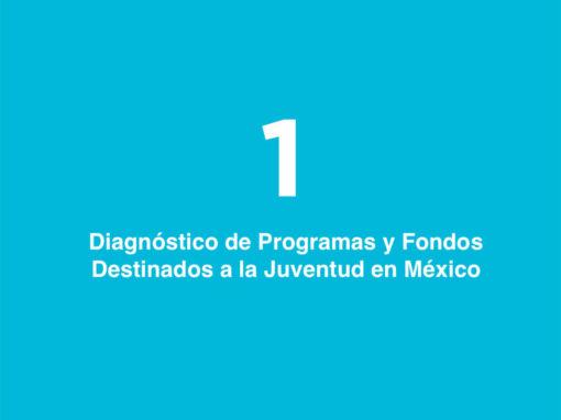 Diagnóstico de Programas y Fondos Destinados a la Juventud en México: Prevención de la Violencia y Construcción de Paz