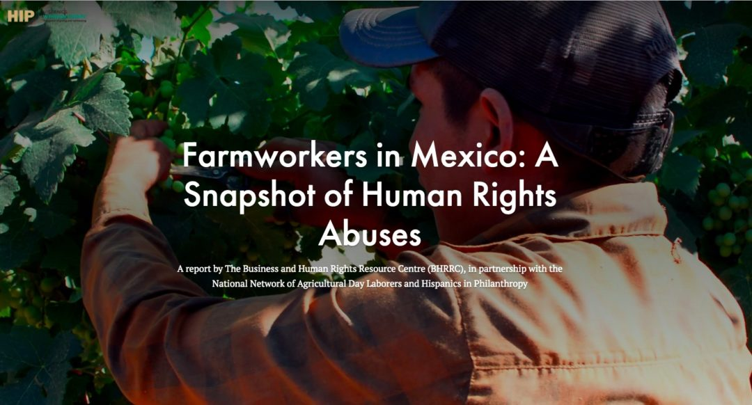 Trabajadores agrícolas en México: una instantánea de los abusos contra los derechos humanos